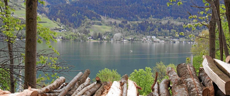 Blick auf den Zellersee